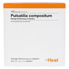 PULSATILLA COMPOSITUM Ampullen 100 Stück - Vorderseite