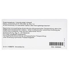 VESICA URINARIA GL D 15 Ampullen 10x1 Milliliter N1 - Rückseite