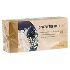 Spitzwegerichtee 25 Stück