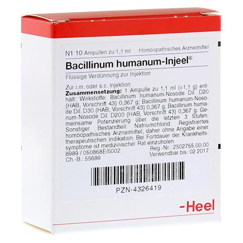 BACILLINUM humanum Injeel Ampullen 10 Stück N1
