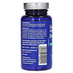 BLUE ESSENTIALS Darm aktiv Tabletten 30 Stück - Rechte Seite