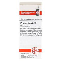 PYROGENIUM C 12 Globuli 10 Gramm N1 - Vorderseite