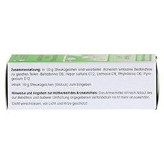 REVET H 11 Globuli f.Heimtiere 10 Gramm - Linke Seite