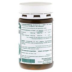 KÜRBISKERNÖL 500 mg Kapseln 130 Stück - Rechte Seite