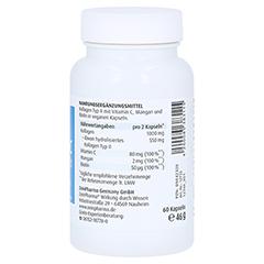 Collagen C Relift Kapseln 500 mg 60 Stück - Rechte Seite