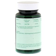 ROTER REIS 330 mg Kapseln 60 Stück - Rückseite