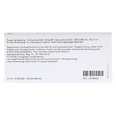 UTERUS GL D 30 Ampullen 10x1 Milliliter N1 - Rückseite
