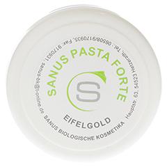 SANUS Pasta forte Salbe 100 Gramm