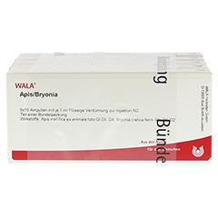 APIS BRYONIA Ampullen 50x1 Milliliter N2 - Vorderseite