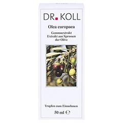 GEMMOEXTRAKT Olive Tropfen 50 Milliliter - Vorderseite