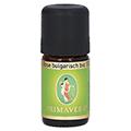 ROSE BULGARISCH Bio 10% ätherisches Öl 5 Milliliter
