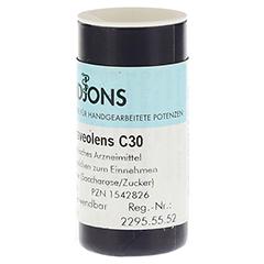 RUTA GRAVEOLENS C 30 Einzeldosis Globuli 0.5 Gramm N1 - Linke Seite