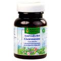 Ayurvedisches Eisenrasayana Tabletten 30 Gramm