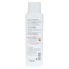 LAVERA Haar Feuchtigkeit & Pflege Shampoo 250 Milliliter - Rückseite