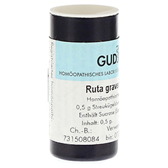 RUTA GRAVEOLENS C 30 Einzeldosis Globuli 0.5 Gramm N1 - Rückseite