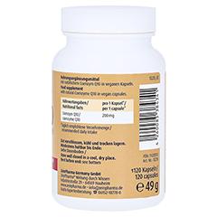 COENZYM Q10 FORTE 200 mg Kapseln 120 Stück - Rechte Seite