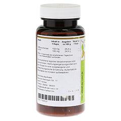 GRIFFONIA Extrakt 5-HTP 100 mg Kapseln 90 Stück - Rückseite