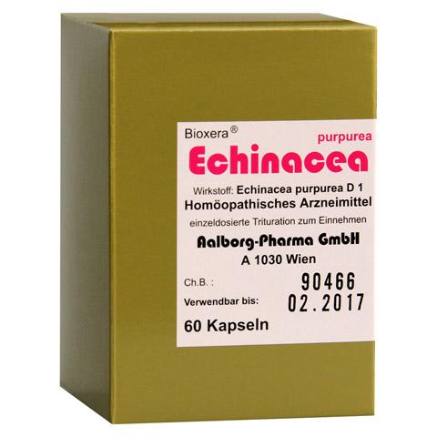 ECHINACEA AALBORG Kapseln 60 Stück N1
