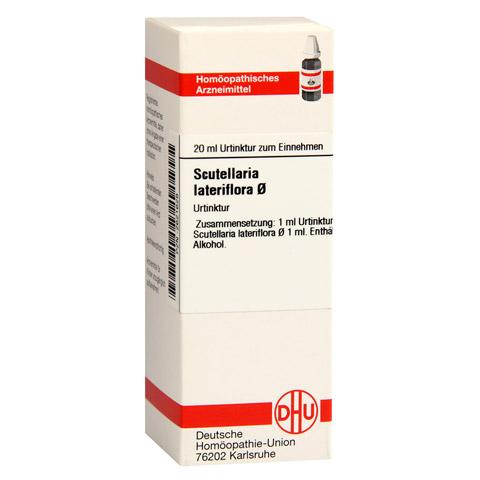 SCUTELLARIA LATERIFLORA Urtinktur 20 Milliliter N1