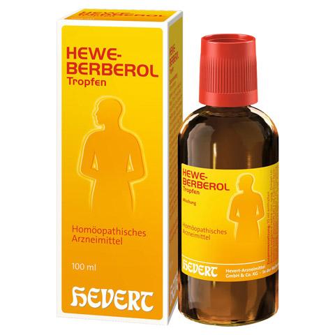 HEWEBERBEROL Tropfen 100 Milliliter N2