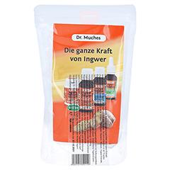 INGWER DR.MUCHES Kombipack Tropfen+Pastillen 1 Stück - Rückseite