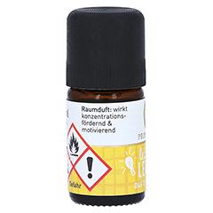 PRIMAVERA Leichter Lernen Duft ätherisches Öl 5 Milliliter - Rechte Seite