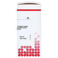 EQUISETUM HIEMALE D 6 Tabletten 80 Stück N1 - Rechte Seite