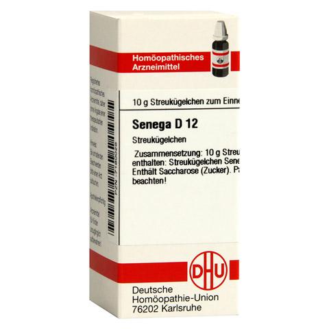 SENEGA D 12 Globuli 10 Gramm N1