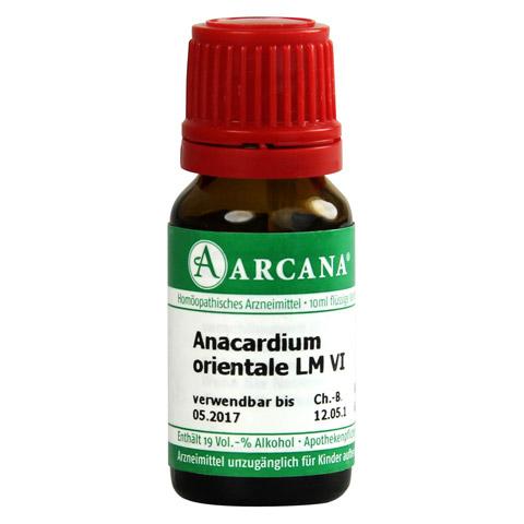 ANACARDIUM ORIENTALE LM 6 Dilution 10 Milliliter N1