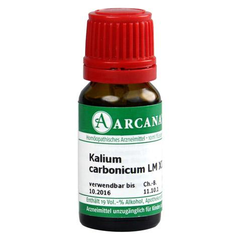 KALIUM CARBONICUM LM 12 Dilution 10 Milliliter N1
