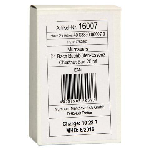 BACHBLÜTEN Murnauer Tropfen Chestnut Bud 20 Milliliter