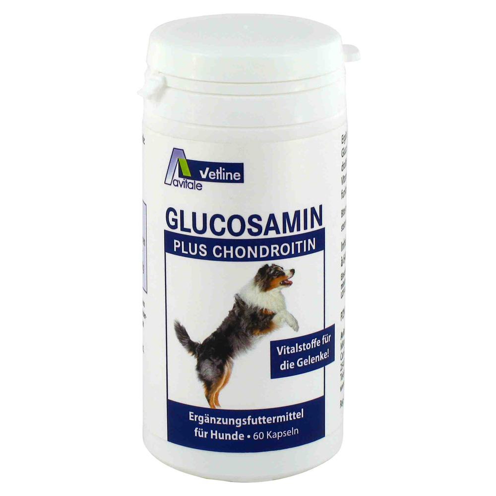glucosamin-chondroitin-kapseln-fur-hunde-60-stuck