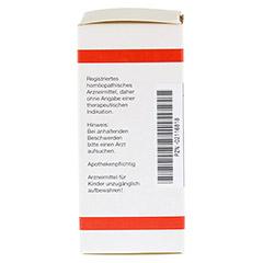 GNAPHALIUM POLYCEPHALUM D 2 Tabletten 80 Stück N1 - Linke Seite