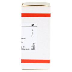 GNAPHALIUM POLYCEPHALUM D 2 Tabletten 80 Stück N1 - Rechte Seite