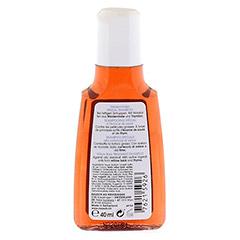 RAUSCH Weidenrinden Spezial Shampoo 40 Milliliter - Rückseite