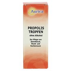 PROPOLIS TROPFEN ohne Alkohol 15 Milliliter - Vorderseite