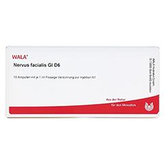 NERVUS FACIALIS GL D 6 Ampullen 10x1 Milliliter N1 - Vorderseite
