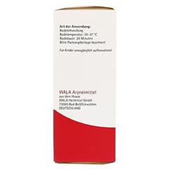 MELISSA EX Herba W 5% Oleum 100 Milliliter - Linke Seite