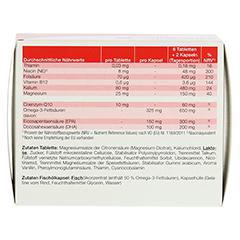 GALACORDIN complex Omega-3 Tabletten 60 Stück - Rückseite