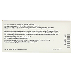 NERVUS PERONAEUS GL D 12 Ampullen 10x1 Milliliter N1 - Rückseite