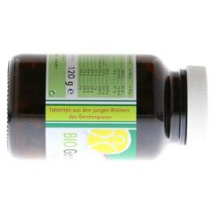 GERSTENGRAS 500 mg Bio Tabletten 240 Stück - Linke Seite