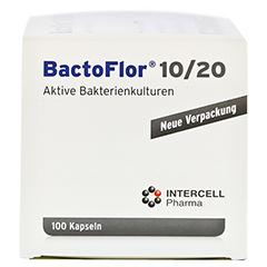 BACTOFLOR 10/20 Kapseln 100 Stück - Rechte Seite