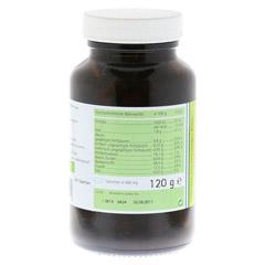 GERSTENGRAS 500 mg Bio Tabletten 240 Stück - Rückseite