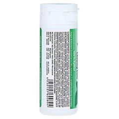 MIRADENT Zahnpflegekaugummi Xylitol Spearmint 30 Stück - Rückseite