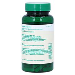 ZINKOROTAT 120 mg Bios Kapseln 100 Stück - Rechte Seite