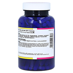 HYALURON 100 mg GPH Kapseln 180 Stück - Rechte Seite