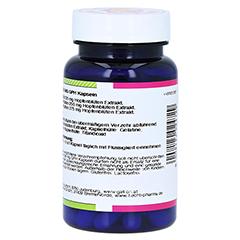 HOPFEN 125 mg GPH Kapseln 60 Stück - Rechte Seite