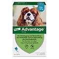 ADVANTAGE 100 Lösung Hunde 4-10 kg 4 Stück
