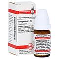 PYROGENIUM D 15 Globuli 10 Gramm N1