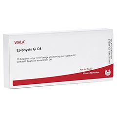 EPIPHYSIS GL D 8 Ampullen 10x1 Milliliter N1